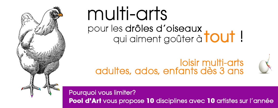pool dart loisir multi-art à Rennes