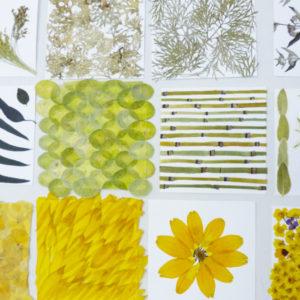 végétal liliane dubois
